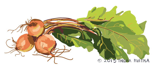beets-for-web-c